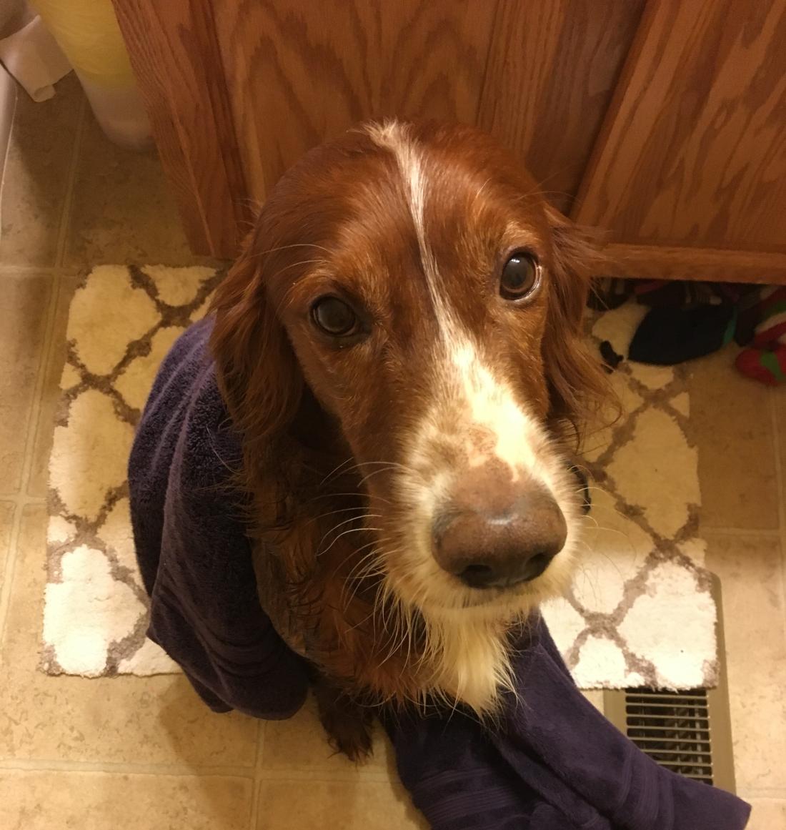 Rusty post-bath